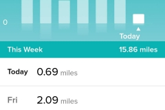 Screenshot_20190105-184746_Fitbit
